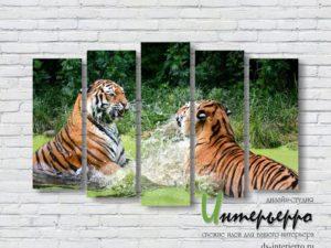 Модульная картина Борьба тигров