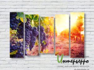 Модульная картина Виноградная лоза