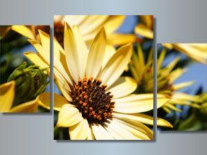 Модульная картина Желтые цветы