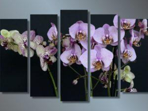 Модульная картина Ветки орхидеи