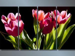 Модульная картина Загадочные цветы
