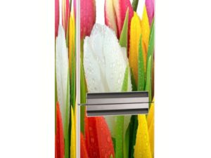 Наклейка на холодильник Тюльпаны
