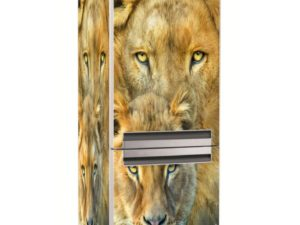Наклейка на холодильник Семейство львов