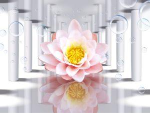 3D Фотообои Волшебный цветок